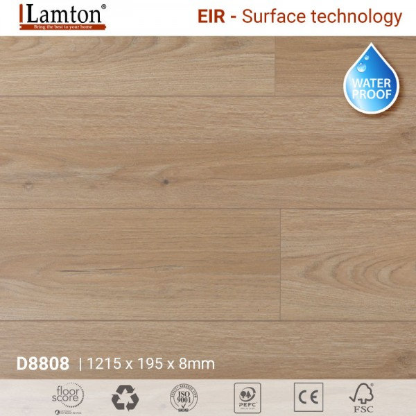 Sàn gỗ Lamton D8808